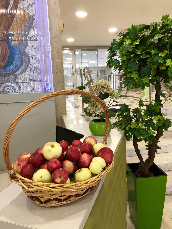 Сегодня отмечается Яблочный Спас