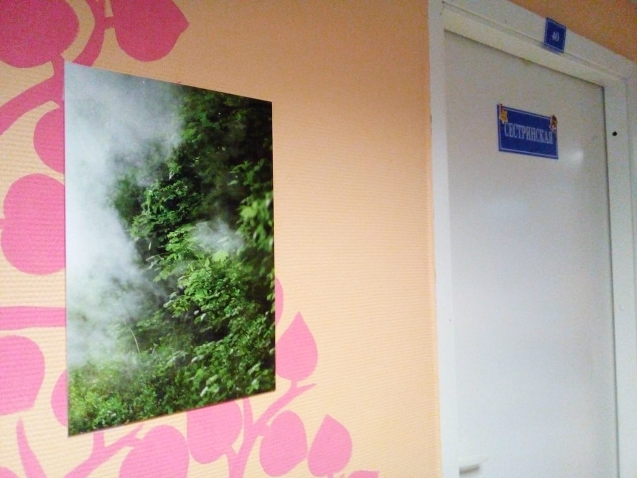 Сегодня московские фотографы подарили больнице художественные фото картины, выполненные своими руками.